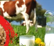 Süpermix Süt Yemi